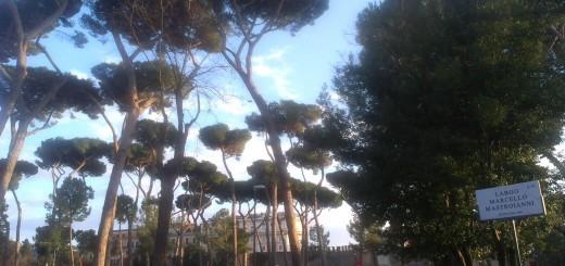 Place Marcelo Mastroiann & villa Medicisi - Rome