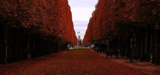 Paris à visiter en automne