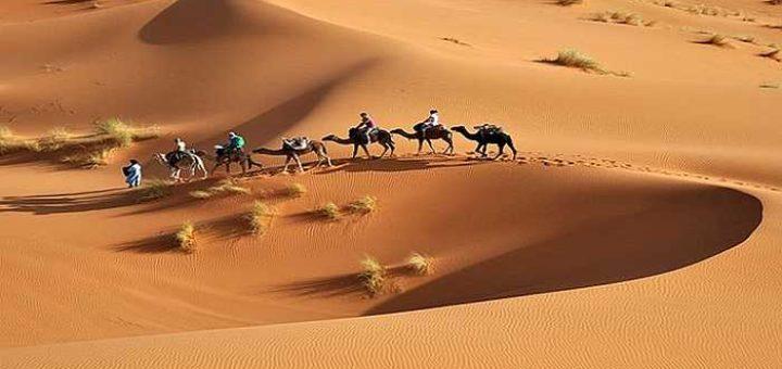 Le tourisme est en hausse en tunisie !